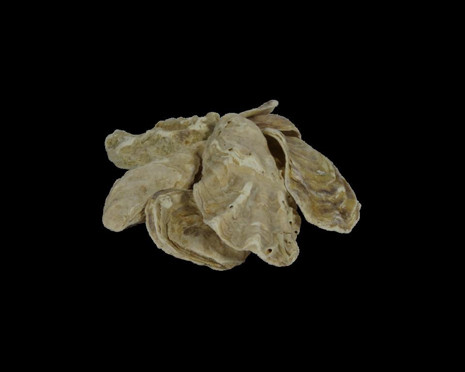 Oesterschelpen in Bigbag (500kg)