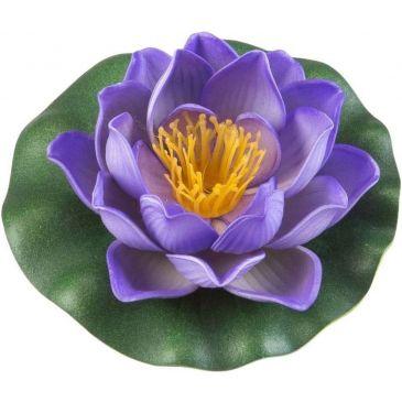 Velda Drijvende Vijverplant Lotus Paars 10 cm