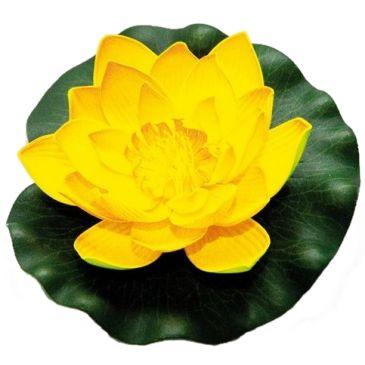 Velda Drijvende Vijverplant Lotus Geel 17 cm