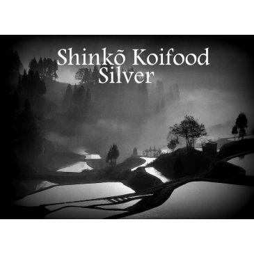 Shinko Silver 10kg.