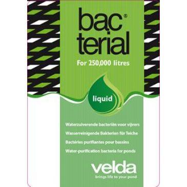Velda Bacterial Liquid 2500 ml.