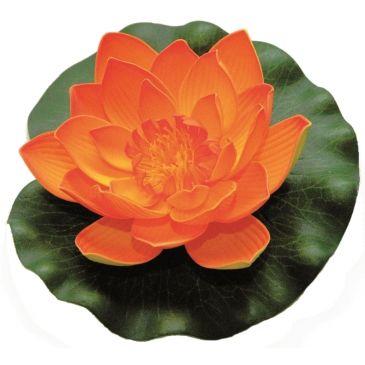 Velda Drijvende Vijverplant Lotus Oranje 17 cm
