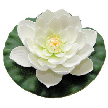 Velda Drijvende Vijverplant Lotus Wit 20 cm