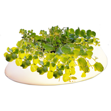 Velda Floating Pond Light