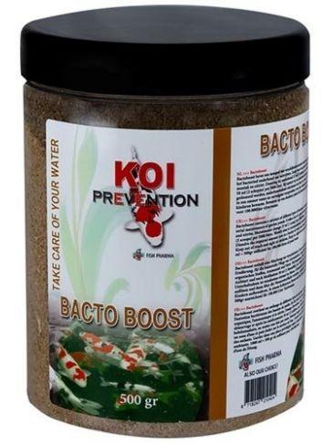 Koi Prevention Bacto Boost 500 gr